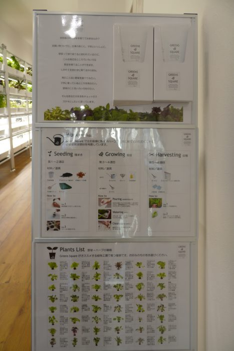 室内菜園3