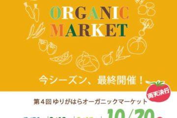 【10月20日(日)】今シーズン最後!ゆりがはらオーガニックマーケット開催
