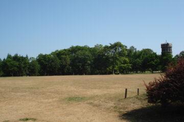 暑さつづく百合が原公園~散策