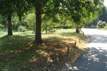 季節はめぐる2 百合が原公園~散策